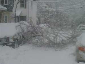 Camb-snow