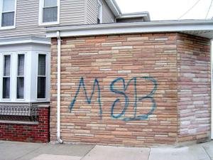 Msb_web_2
